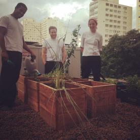 Aqui nosso lixo vira adubo que alimenta a nossa horta! Oh yeaaah! E quem cuida das plantinhas? Os cozinheiros!